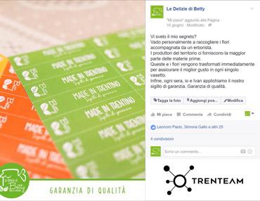 Trenteam Social Campaign