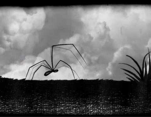 Il Ragno Stanco Animazioni digitali 13